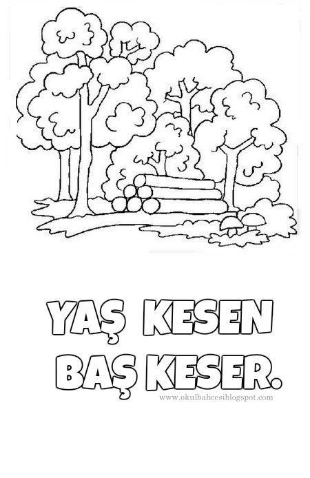 Orman Ormanhaftası Ağaç Ağaçgünü çevrekorumahaftası