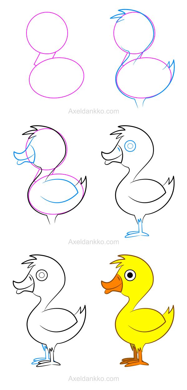 How to draw a duck comment dessiner un canard dessin pinterest dessin dessiner et - Oiseau facile a dessiner ...