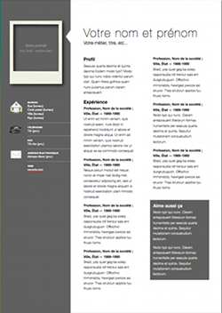 Resume Template Pages Professional Modern Cv Template For Pages  Modern Cv Template Cv