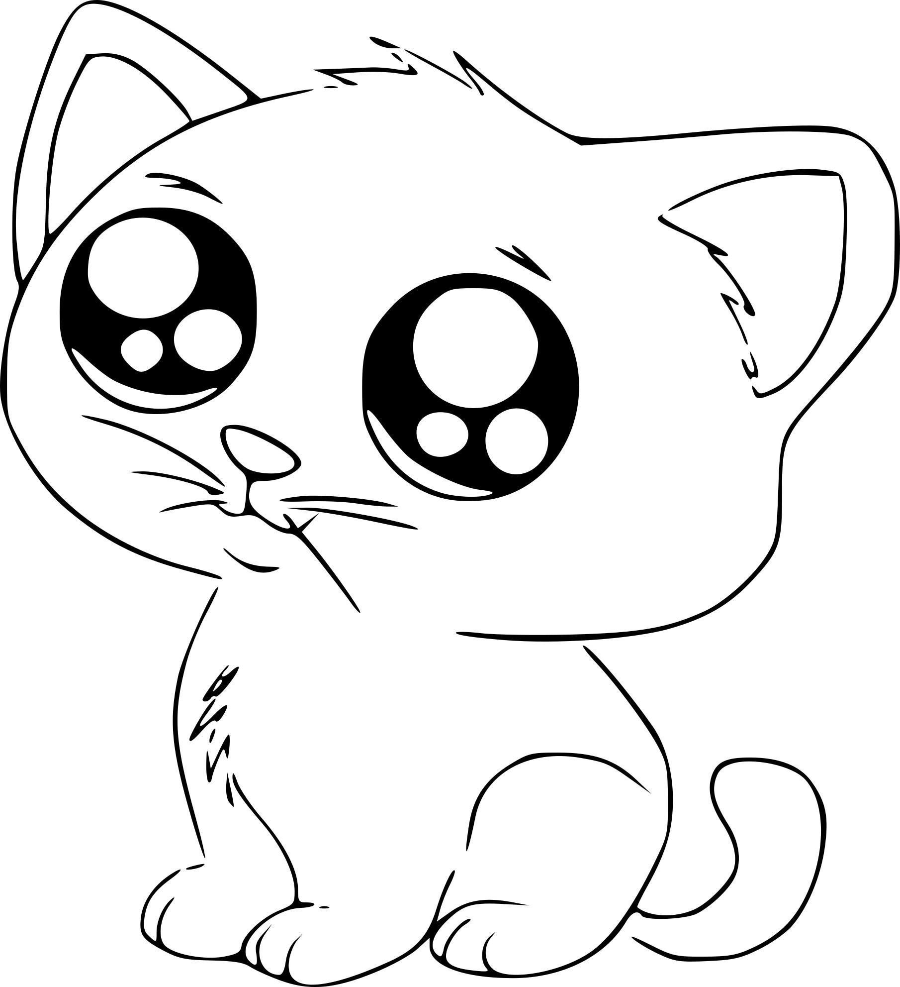 8 Coloriage Imprimer Chat Cute Cartoon Drawings Kitten Drawing Cartoon Drawings Of Animals