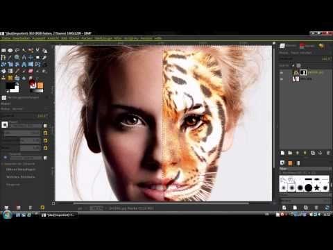Hd Gimp 2 8 Tutorial Halbes Tigergesicht Deutsch Gimp Tutorial Gimp Photo Editing Photoshop Elements