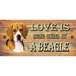 Beagle Wooden Funny Sign Wall Plaque Gift Present Love Is Being