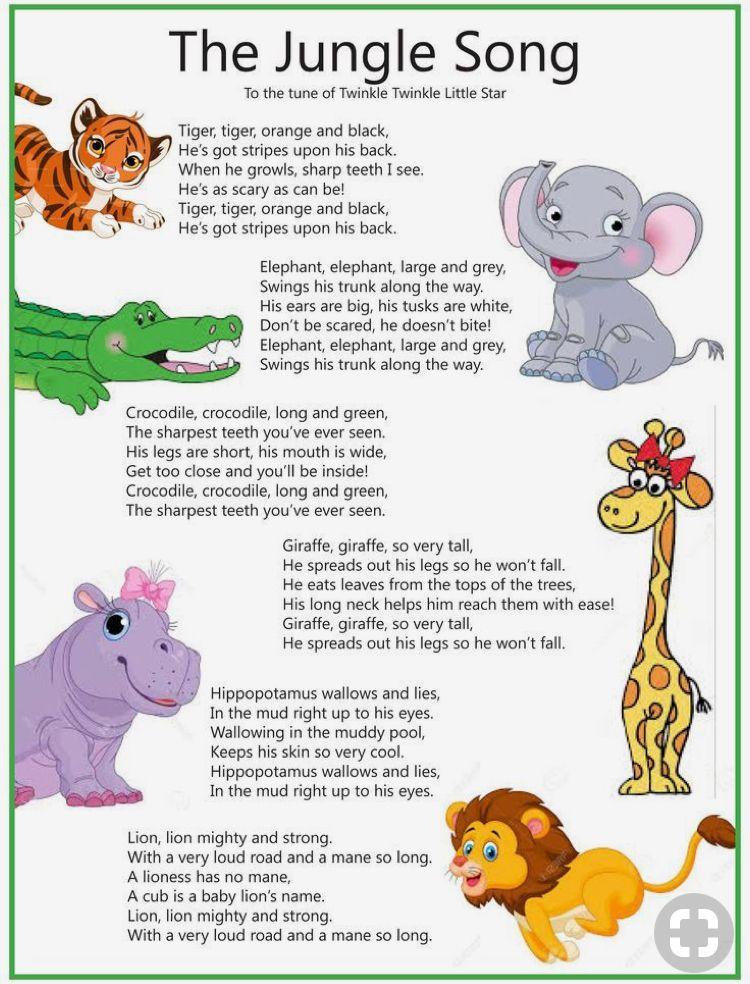 The Jungle Song Kids Songs Kids Kids Education Y Kids