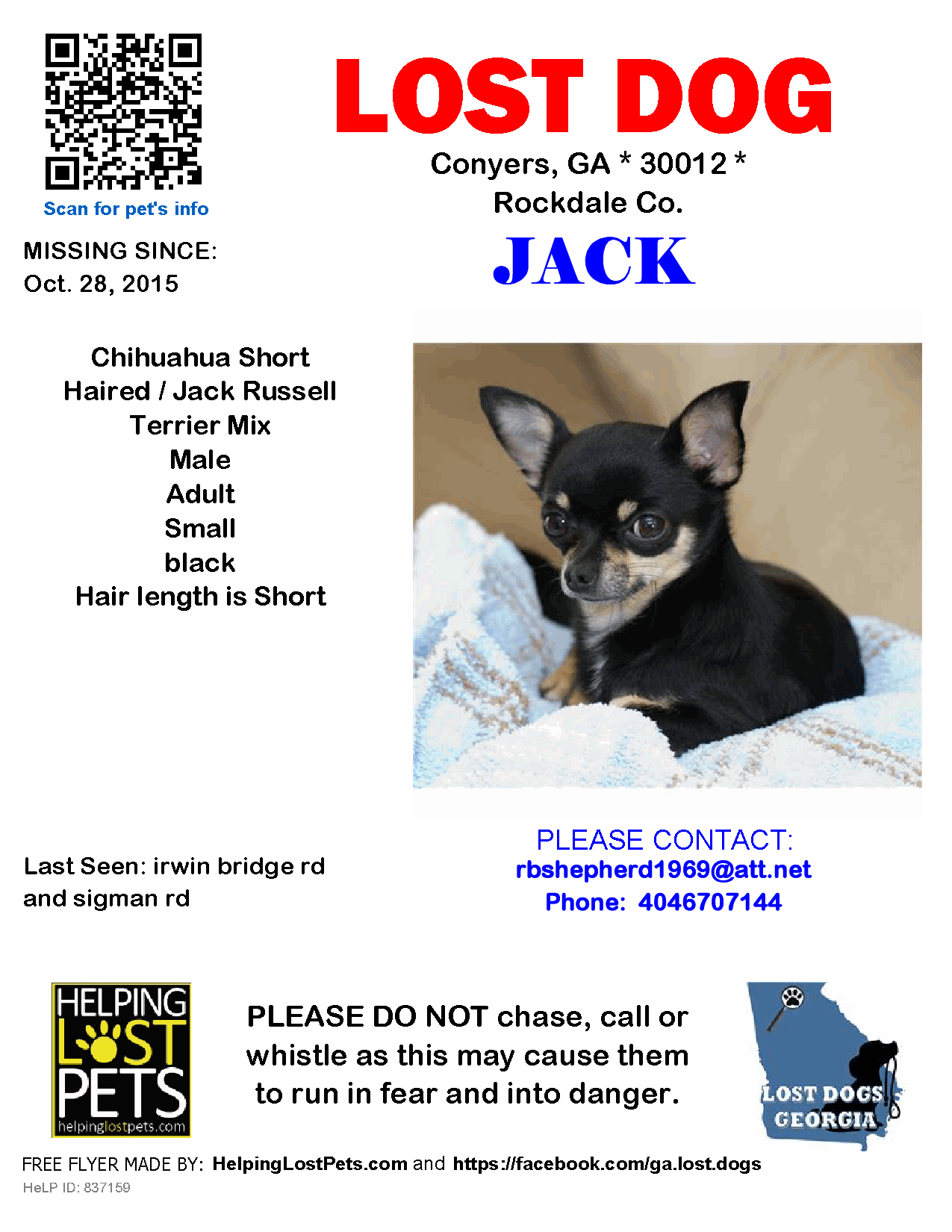 Lost Dog - Chihuahua Short Haired - Conyers, GA, United States