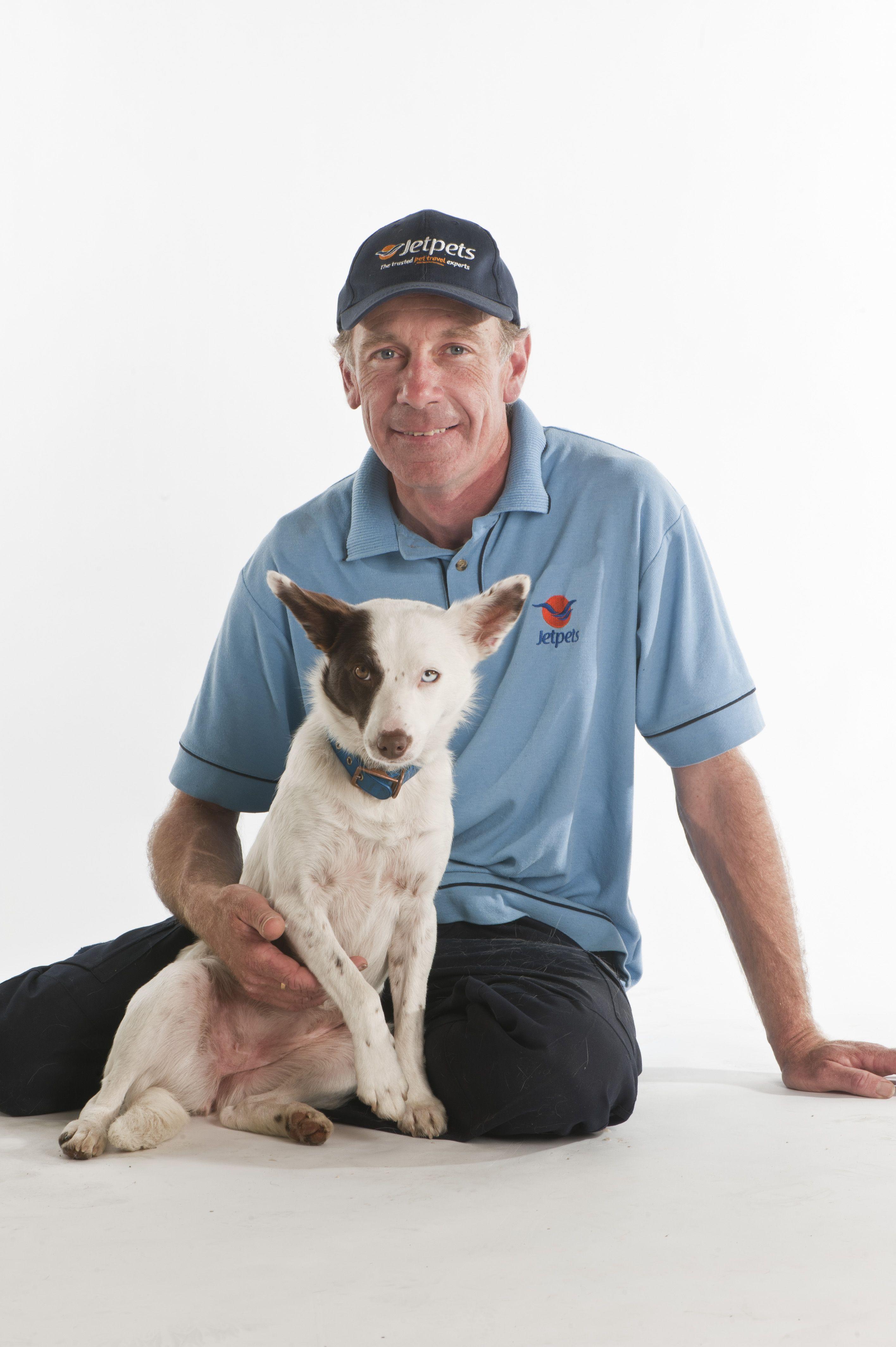 Hanging With Dave Pet Travel Pet Transport Animals