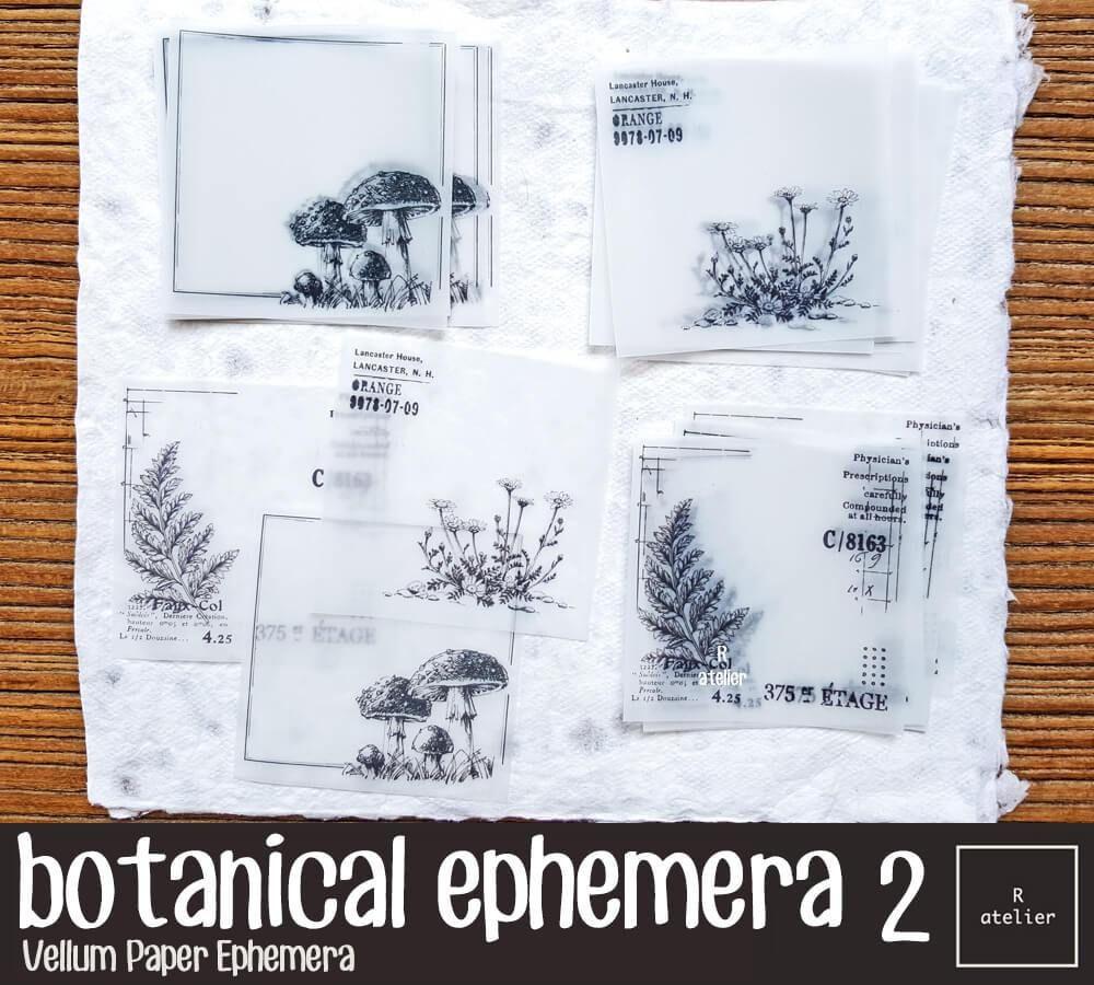 Botanical Ephemera 2 Vellum Note Paper Note Paper Vellum Paper Paper Ephemera