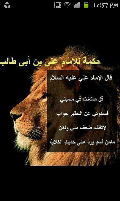 من اقوال الامام علي بن ابي طالب Funny Arabic Quotes Ali Quotes Arabic Quotes