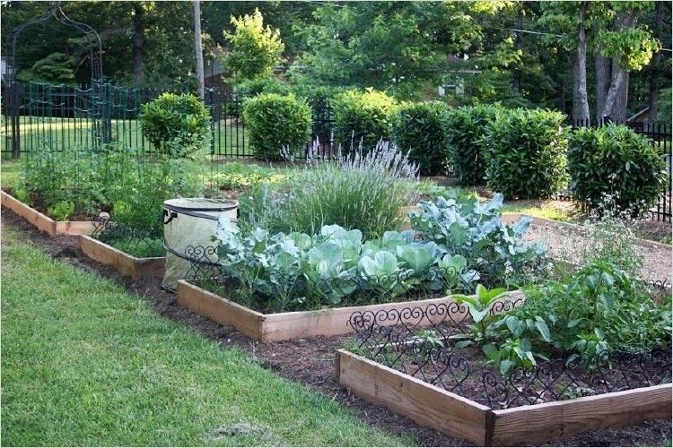 40 Best Beautiful Vegetable Gardens Ideas That Will Amaze You