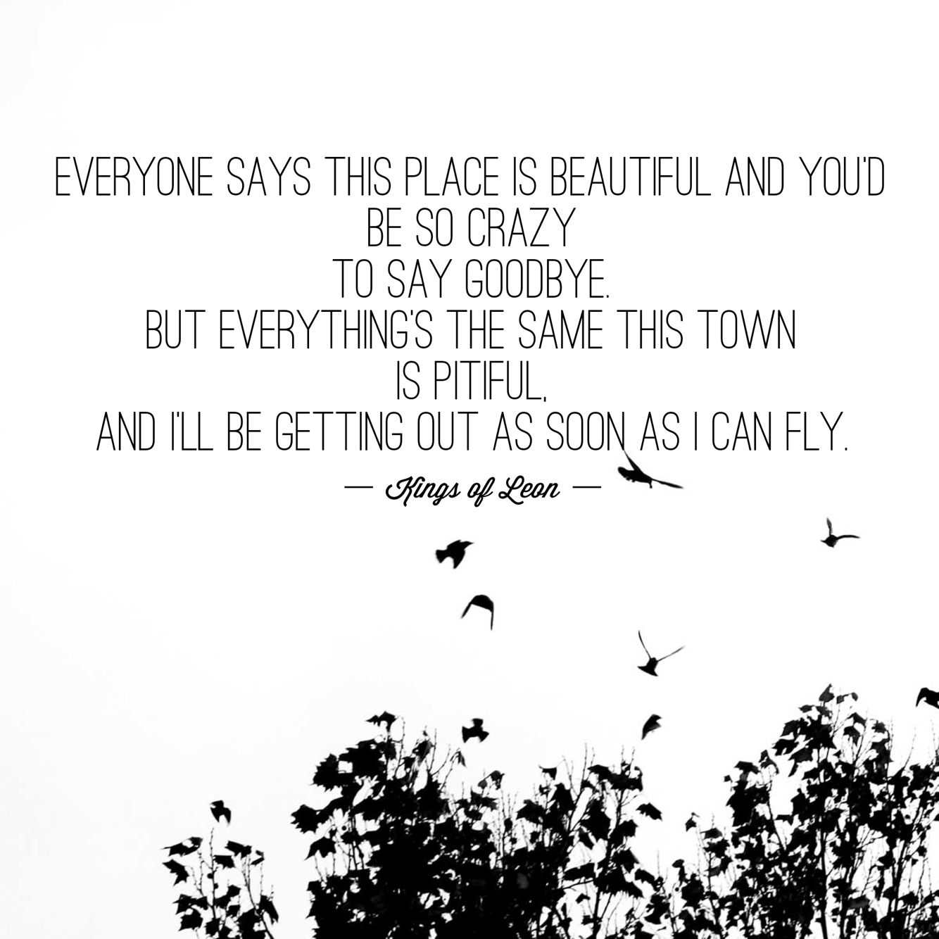 Getting Out As Soon As I Can Fly (Kings Of Leon Lyrics