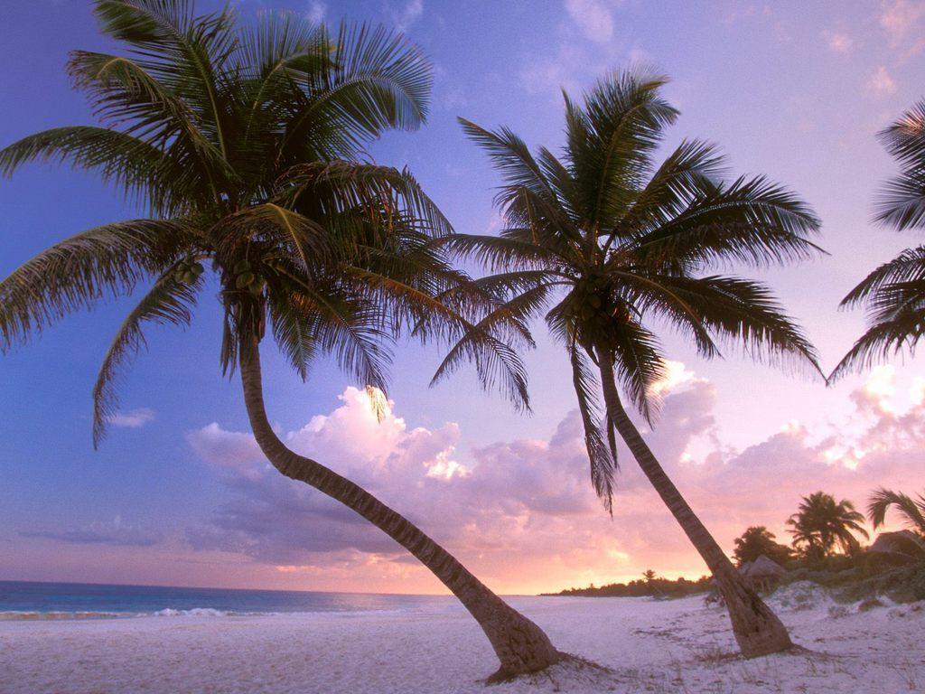 Cancun Mexico Desktop Wallpaper 1024x768 Cancun Mexico Cancun Trip Beach Wallpaper