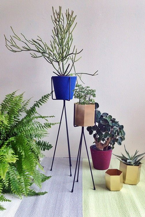Portrayal Of Tall Plant Stands: Decorative And Functional Tool For Indoor  And Outdoor Gardens