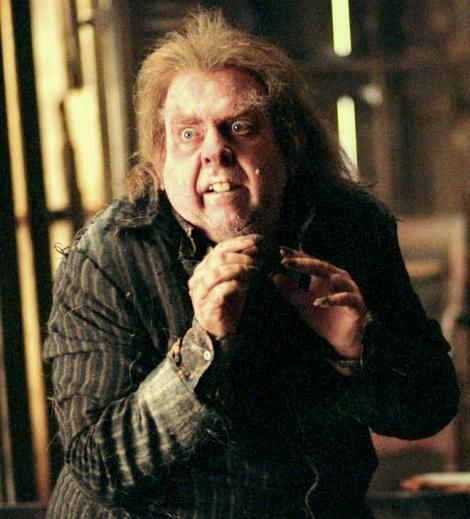 Harry Potter 30 Day Challenge Day 09 Least Favorite Male Character And Why Peter Pett Peter Pettigrew Harry Potter Harry Potter Film Harry Potter Characters