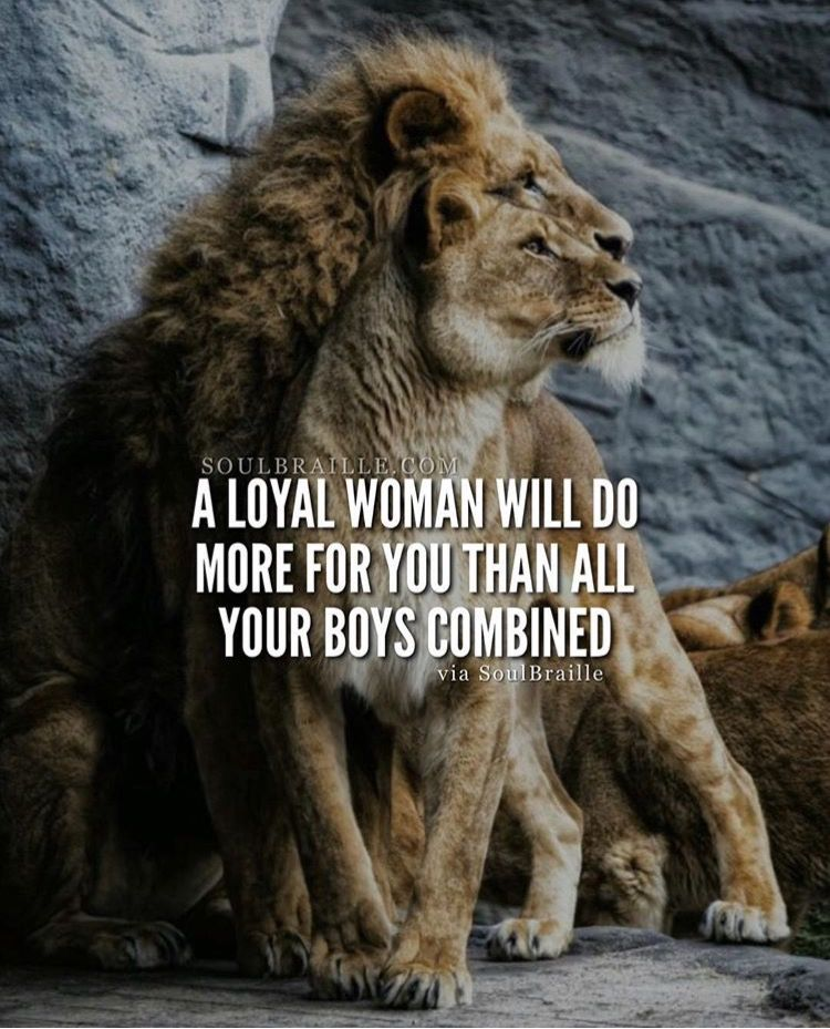 Pin by Mia Carrillo on Truth Lion quotes, Lioness quotes