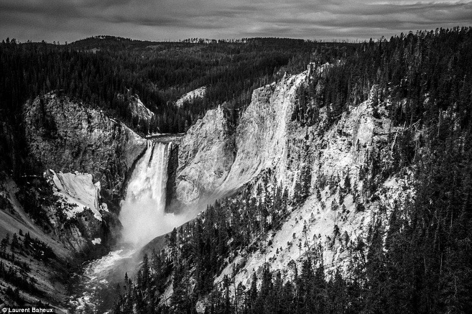 The breathtaking upper falls at yellowstone national park in wyoming are a 109ft cascade of surging