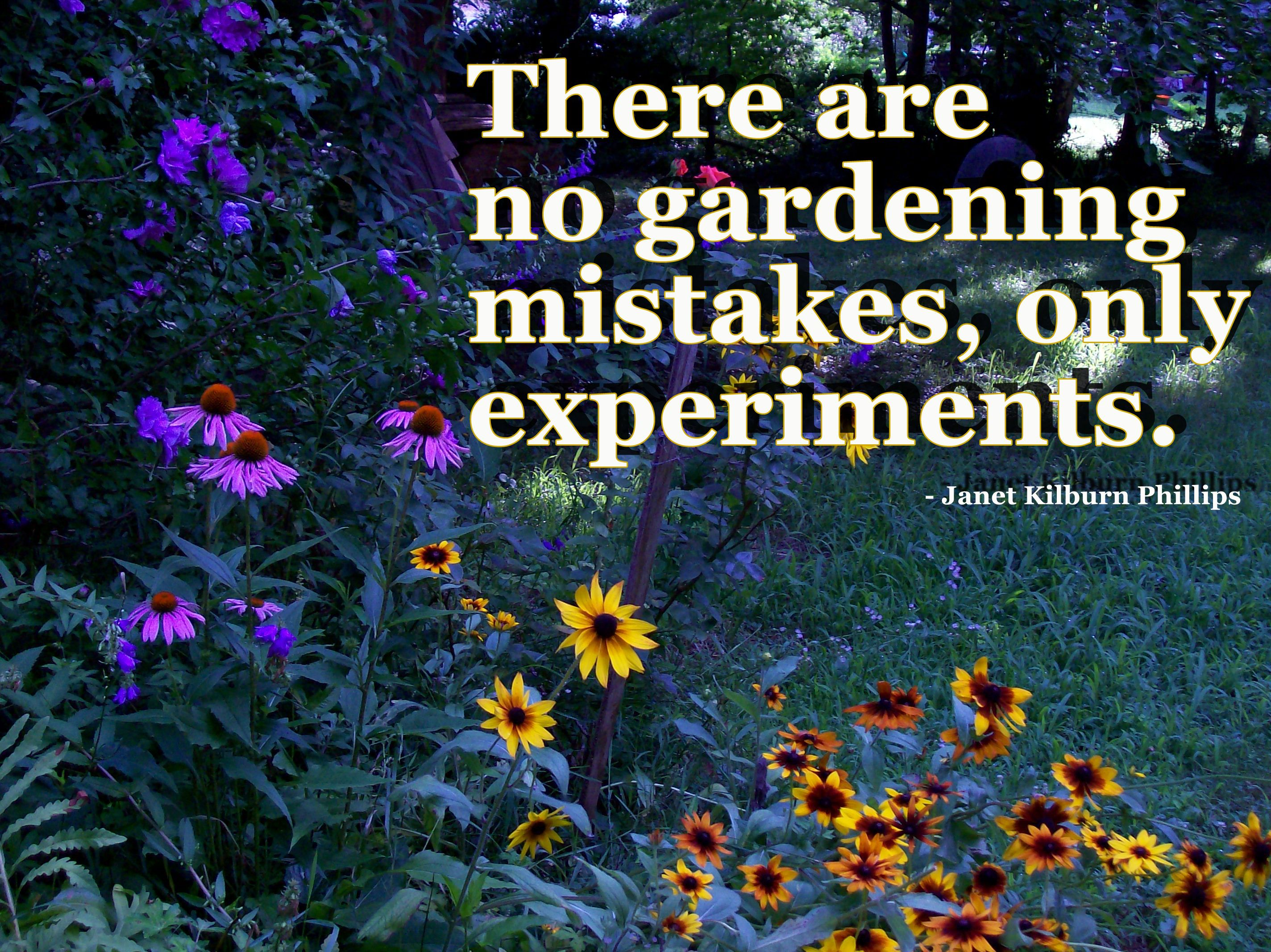 """There are no gardening mistakes..."""" Garden quotes"""