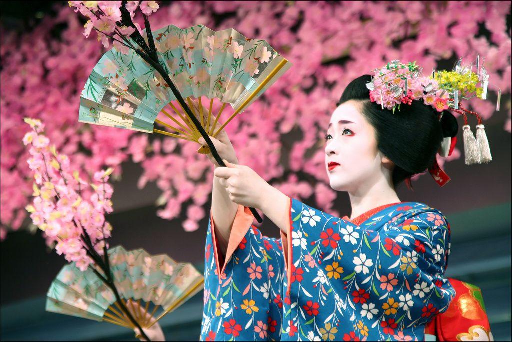 K O T O H A Cherry Blossom Dance Cherry Blossom Festival Cherry Blossom Japan Cherry Blossom