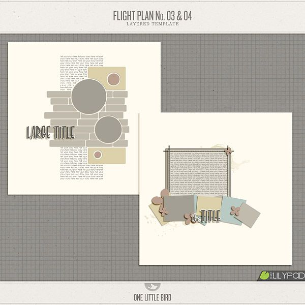 Flight Plans 3 \ 4 The Lilly Pad Wishlist Pinterest Changu0027e 3 - flight plan template