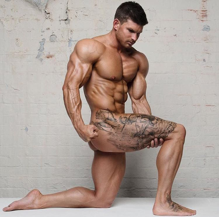 gay muscular les