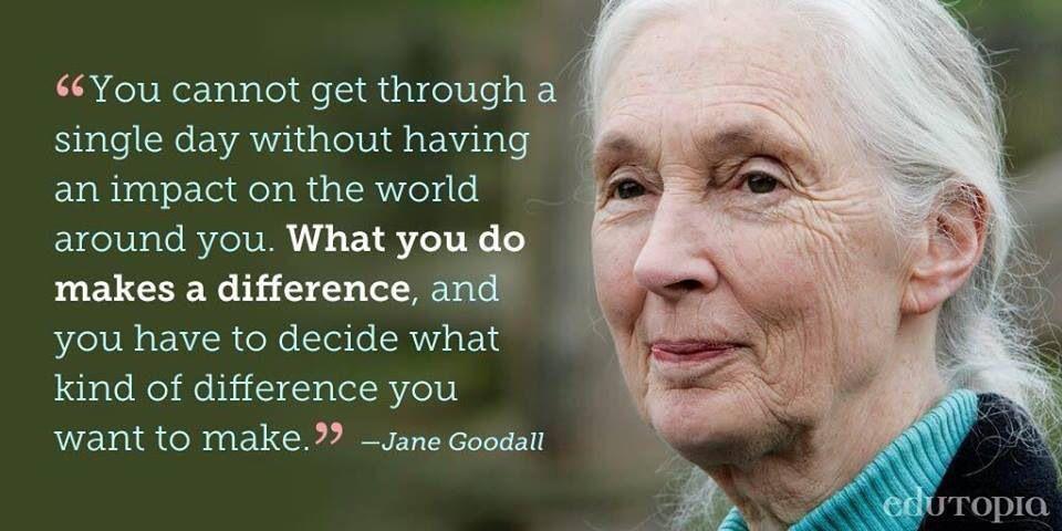 inspiring quotes life dreams passion Jane goodall