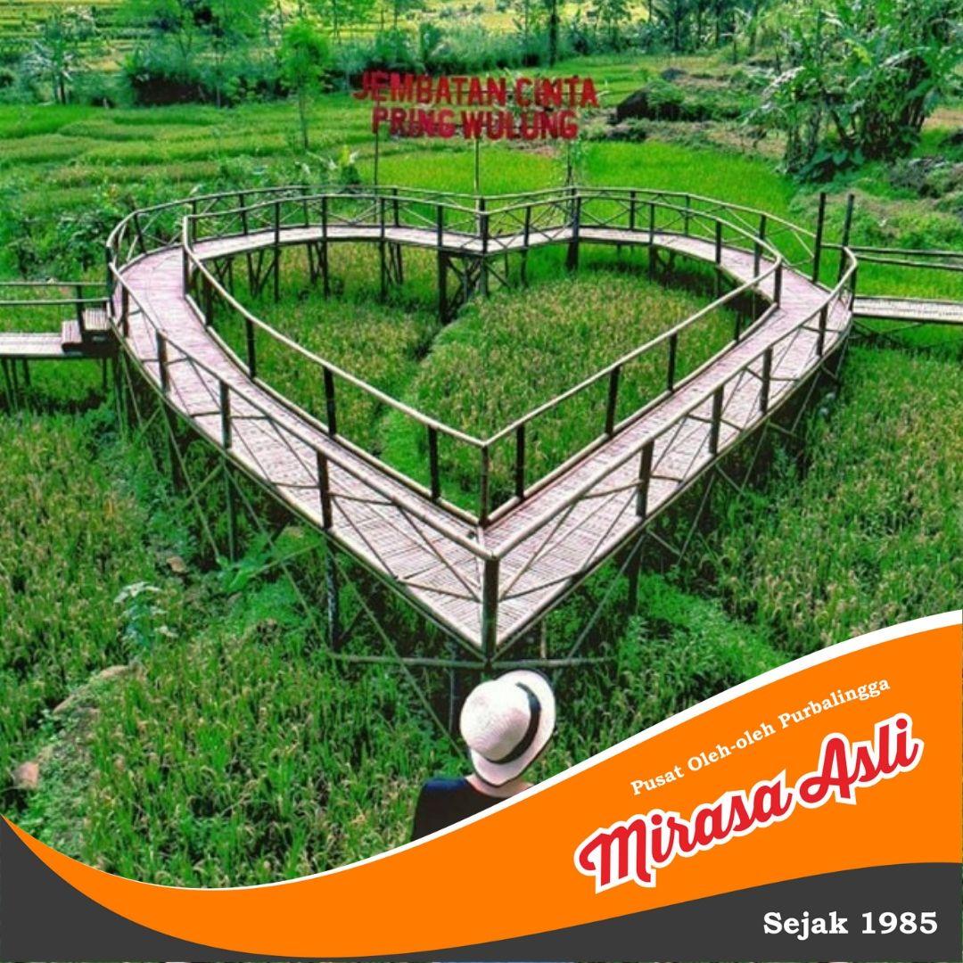 Tempat Wisata Kota Purbalingga Jembatan Cinta Pring Wulung Yang Terbuat Dari Bambu Pring Wulung Berada Di Tengah Tengah Persawahan Dan Pariwisata Tempat Bambu