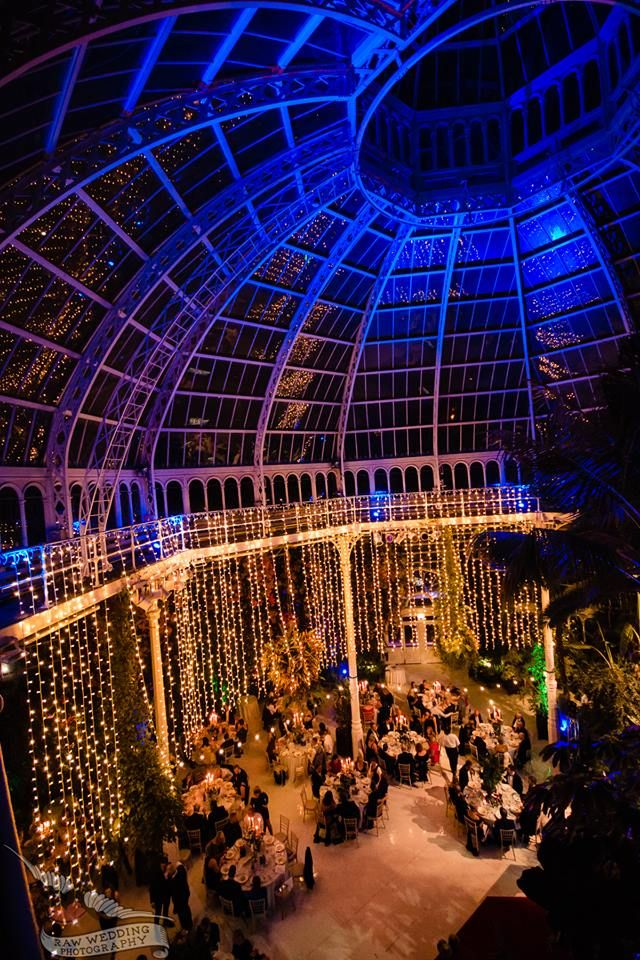 Charity Dinner at Sefton Park Palm House #charitydinner #corporatedinner #seftonpark #palmhouse #dinnervenue #dinedifference