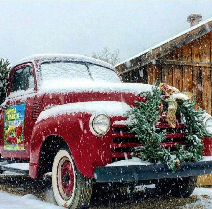 Christmas Tree Inn Tn: Dollywood's DreamMore Resort