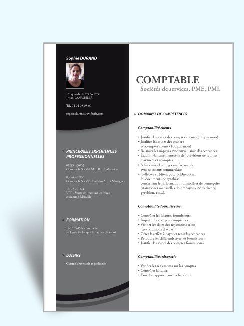 Modele Cv Original Exemple Cv Design Jpg 487 650 Modele Cv Exemple Cv Cv Graphique