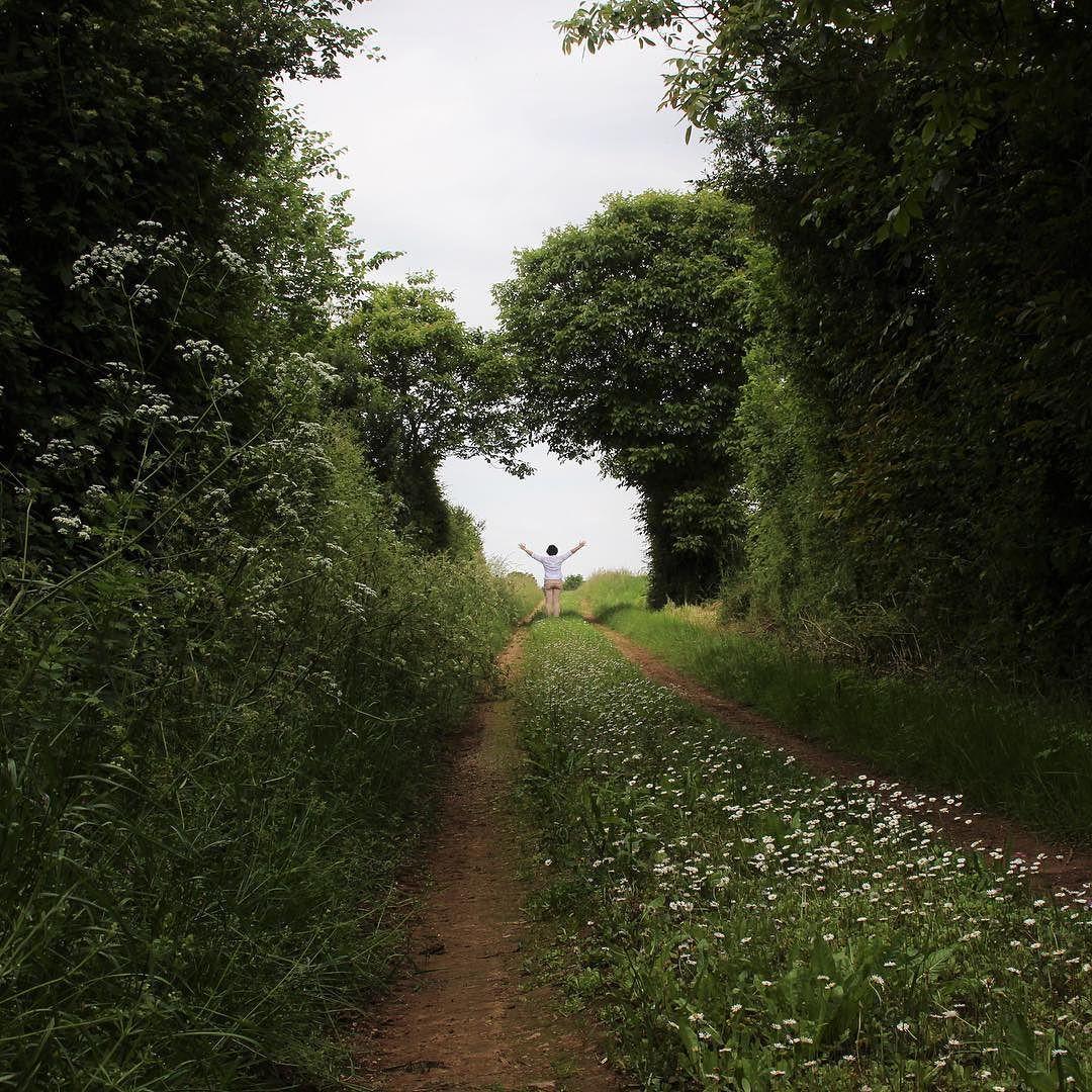 Nature ressource sérénité. Les creux chemins verdoyants. #deuxsevres #aquitaine #jaimelafrance #igersniort