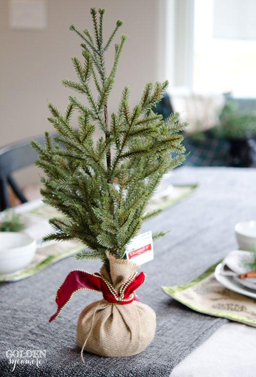 Miniature Evergreen Christmas Centerpiece Christmas Table Decorations Christmas Diy Christmas Centerpieces