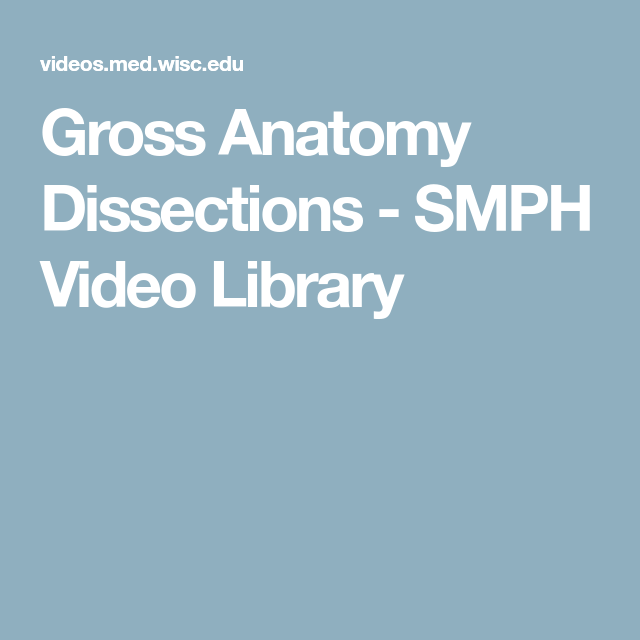 Gross Anatomy Dissections Smph Video Library Anatomy Pinterest