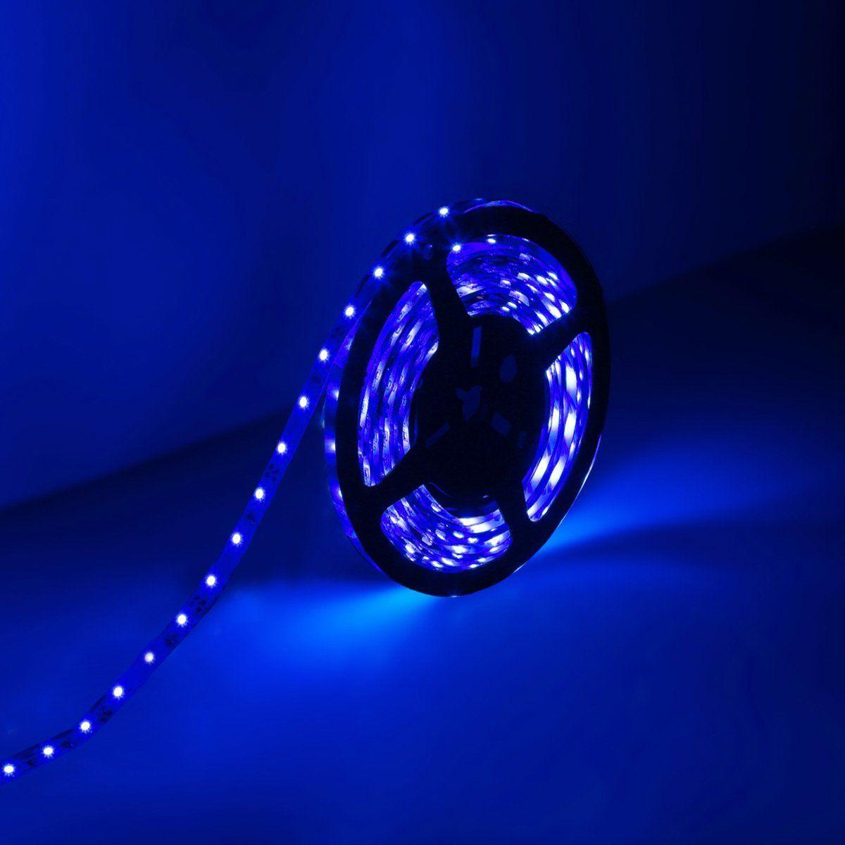 Amazon le lampux 12v flexible led strip lights led tape blue le 164ft5m flexible led light strips 300 units smd 3528 leds 12v dc led strip lights blue non waterproof lighting strips led tape for aloadofball Image collections