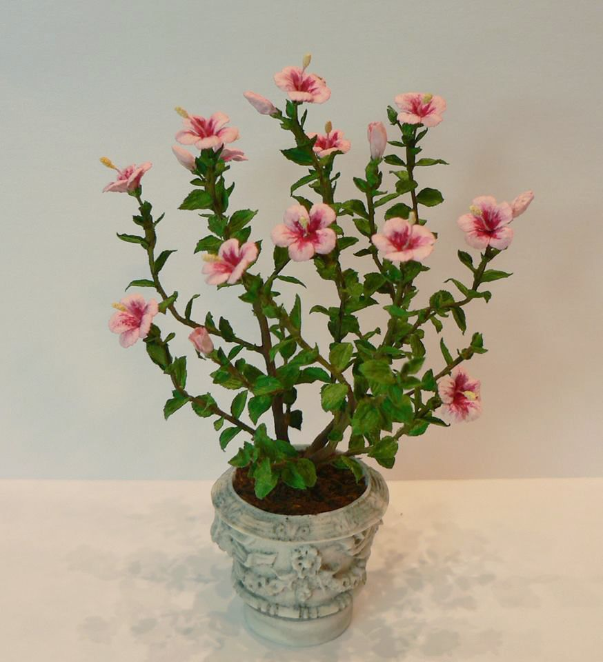 Jeannette Buchholz Garden Of Miniatures Hibiscus Miniature