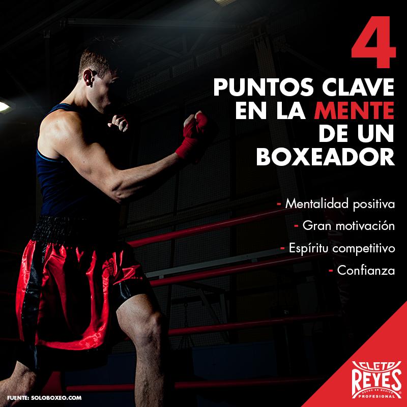 Cletoreyes Workout Boxeo Boxinggloves Box Boxeo