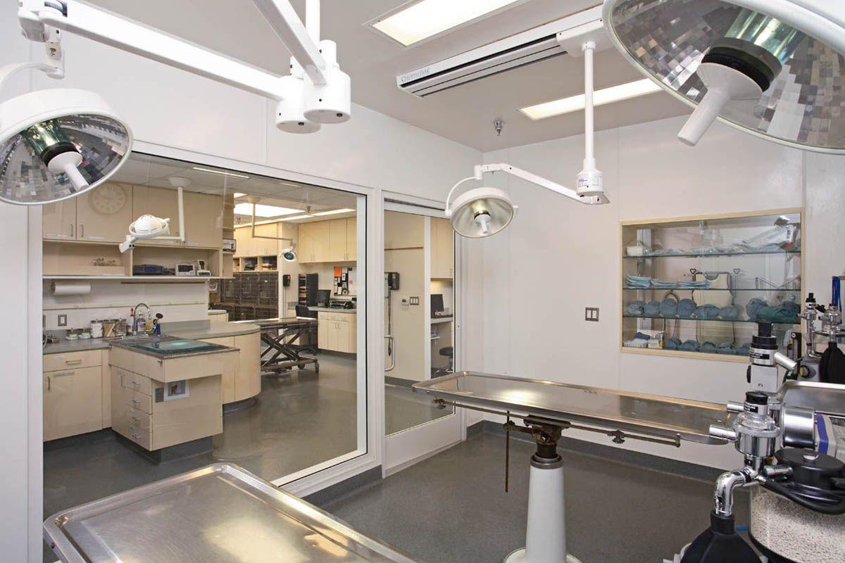 Veterinary Architects Park Centre Animal Hospital