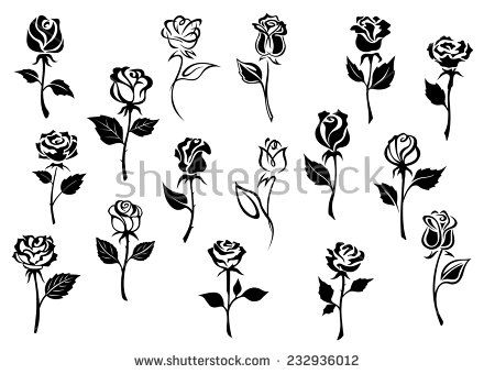 Black And White Elegance Roses Flowers Set For Any Floral Design Or Love Concept Black And White Roses Black And White Flowers Small Drawings
