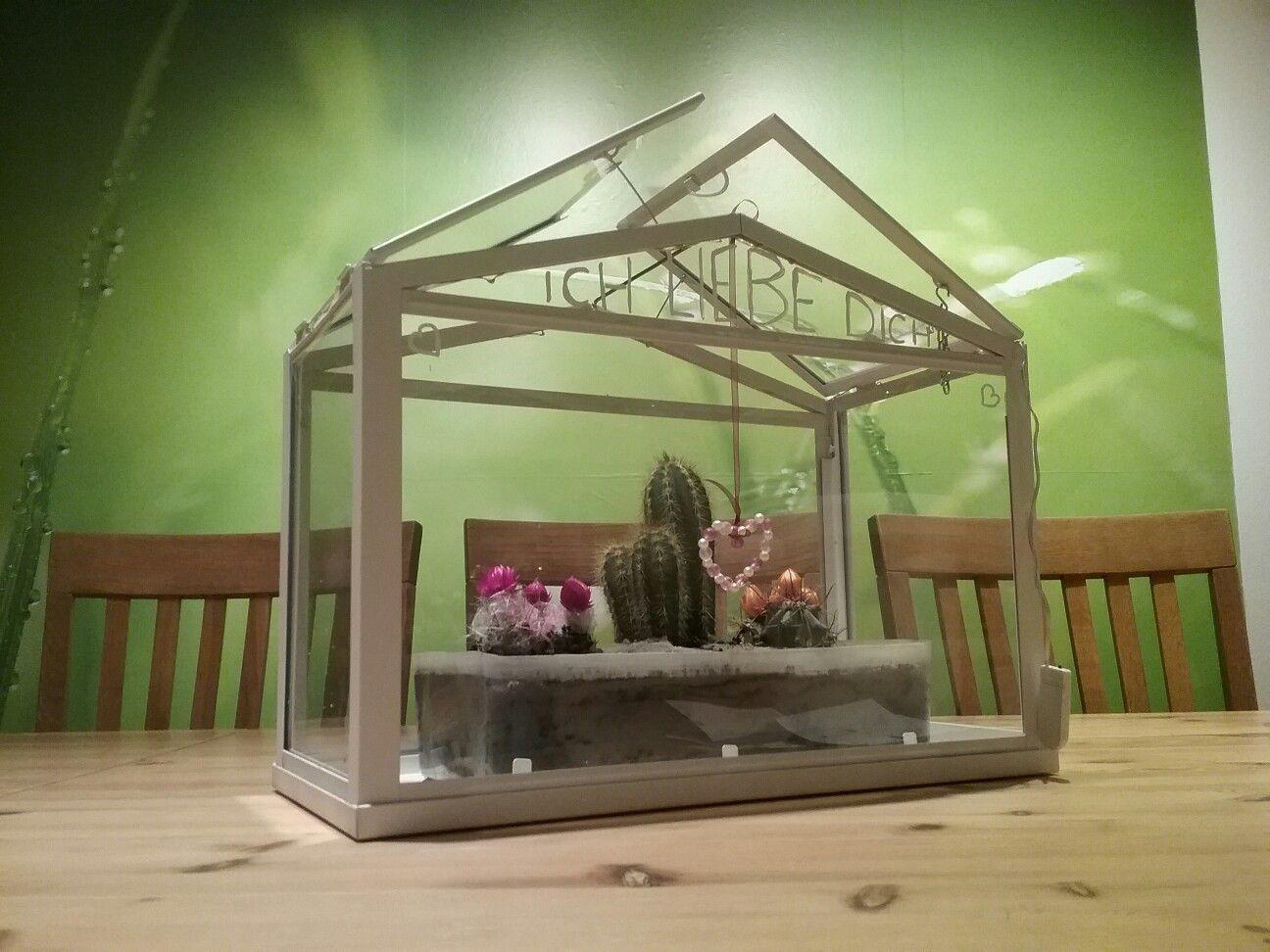 beleuchtetes gewächshaus (ikea hack) | tattis ideenwerkstatt