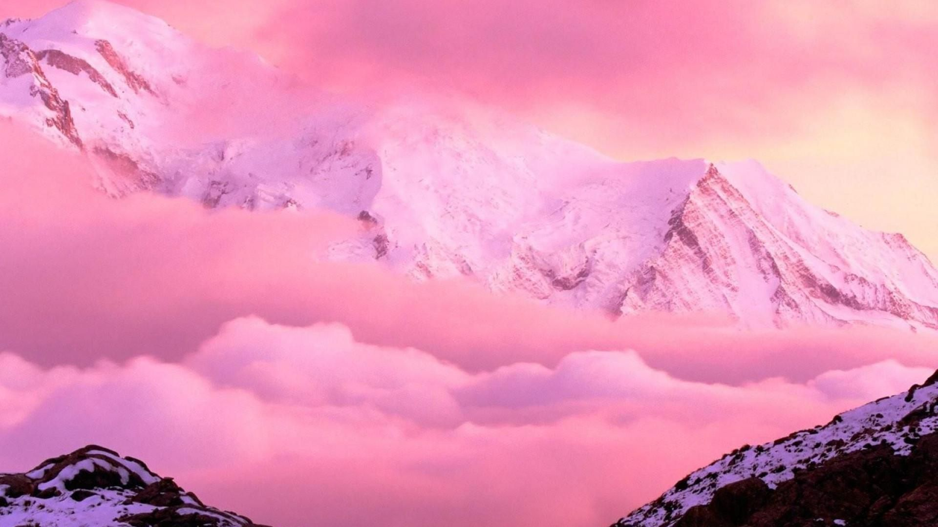 Pink Nature Wallpaper Hd