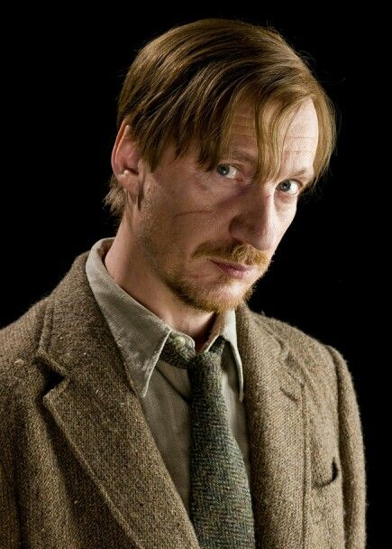 Remus Lupin Harry Potter Professors Lupin Harry Potter Harry Potter Cosplay