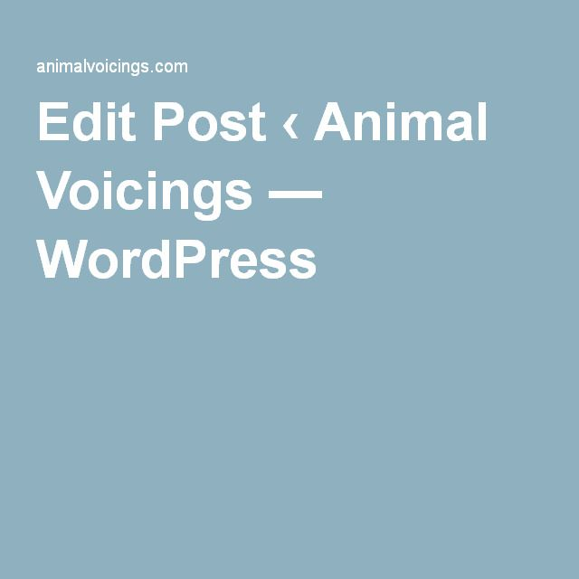 Edit Post ‹ Animal Voicings — WordPress
