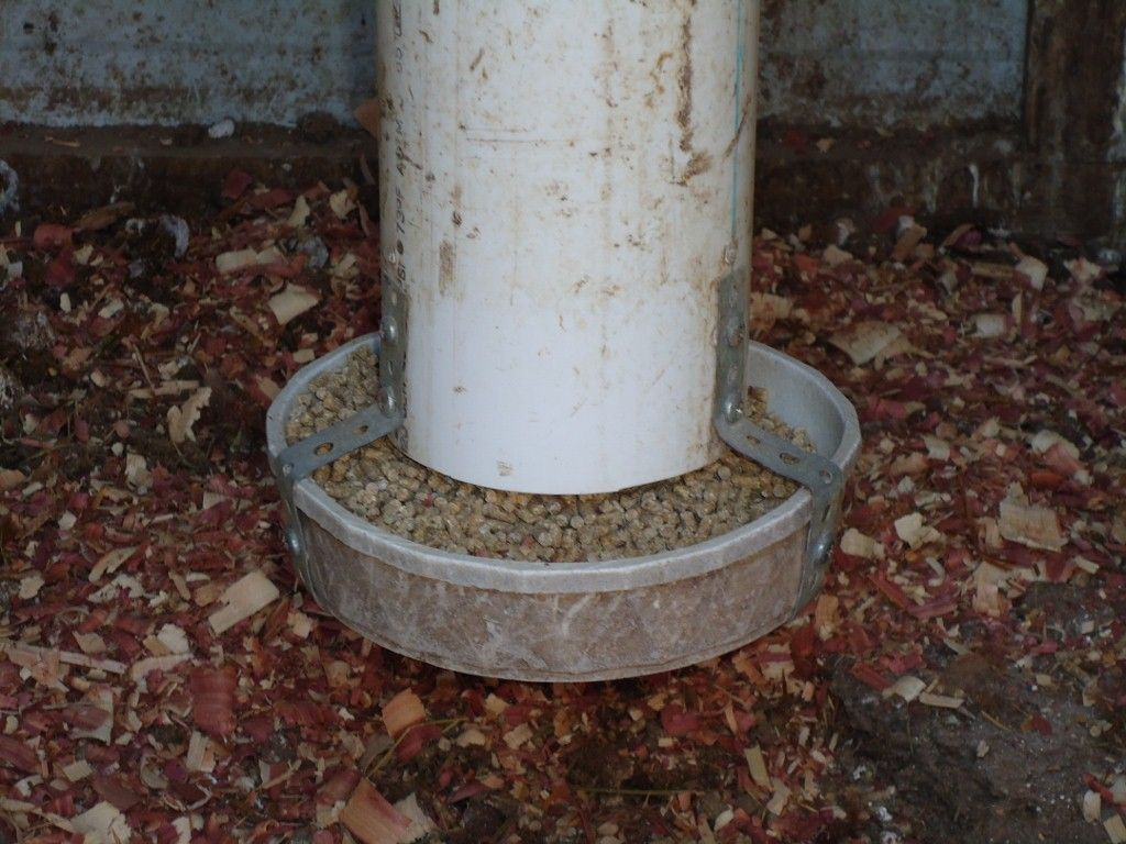homemade chicken waterers and feeders - Bing Images