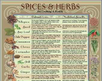 LAMINATED Healing Herbs/Spices Kitchen Charts | Spice/rubs