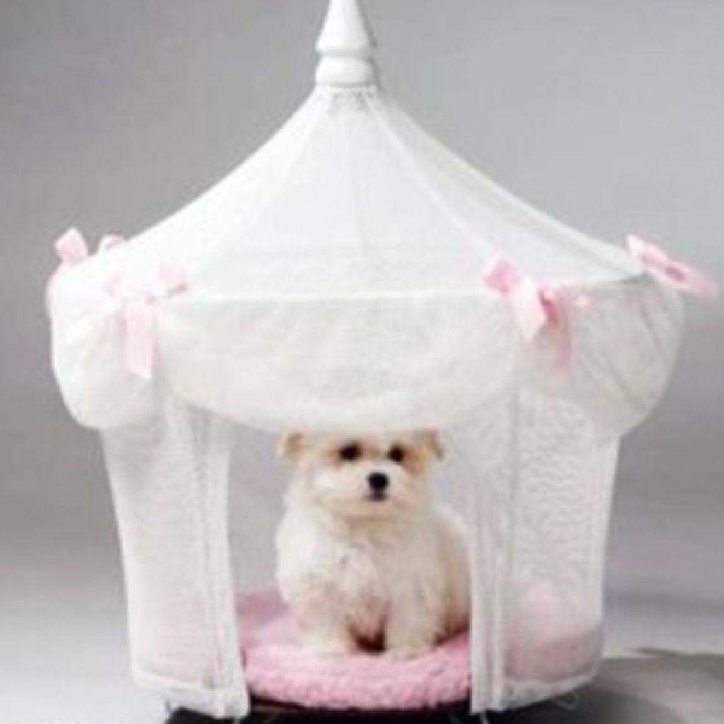 princess dog bed my love