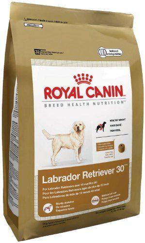 Royal Canin Labrador Retriever Puppy Dry Dog Food 30 Pound Bag Best Dog Food Dry Dog Food Labrador Puppy