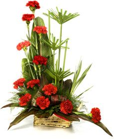 Dozen Carnations Arrangement Bangalore Carnations Send Carnations To Bangalore Carnation To Contemporary Flower Arrangements Modern Flower Arrangements Tropical Floral Arrangements