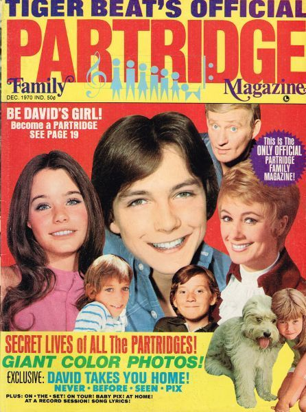 Tiger Beat's Official Partridge Family Magazine I have all of theses  thanks to ebay ,my mother took mine away for bad grades in school then lost them...Got them all now...
