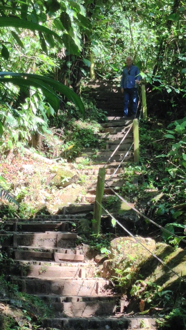 Some of the 480 steps to the beautiful LaFortuna Waterfall in Costa Rica.