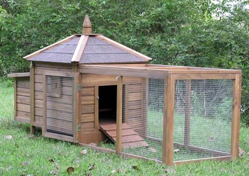 Chicken poultry coop hen house baby chicks rabbit hutch for Chicken and duck coop