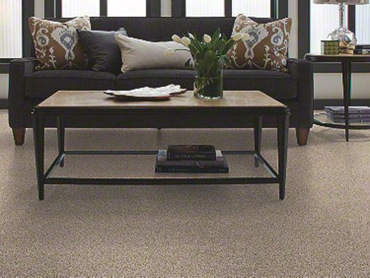 Home Foundations Gold Collection Of Seaside Vista Carpet By Shaw Down Town Color 91039 Carpet Flooring Carpet Home Decor