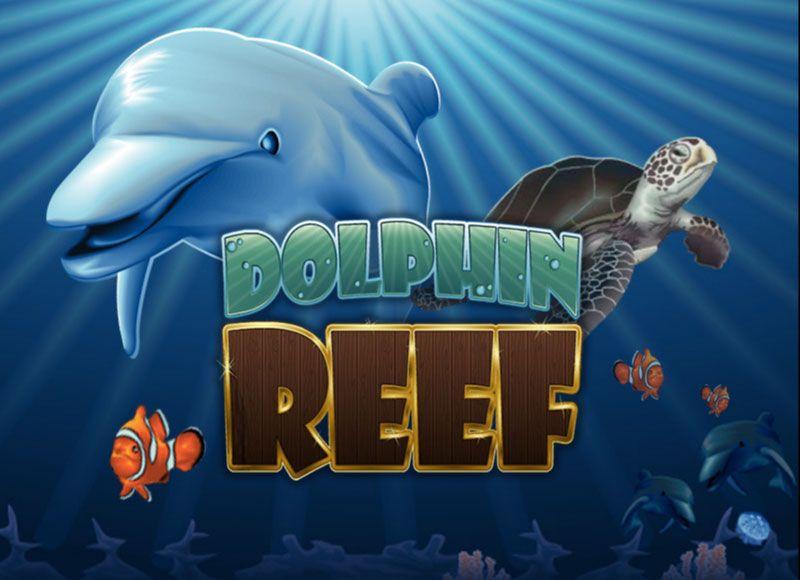 Delphin Poker