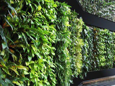 Vertical Garden Concept for Buildings.